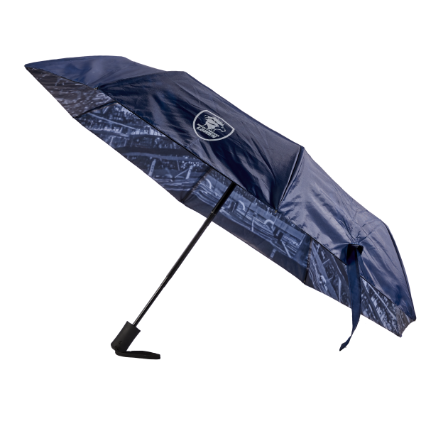 Löwen Regenschirm Knirps