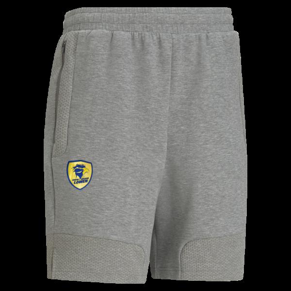 Löwen Team-Shorts PUMA 21/22